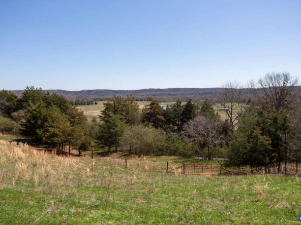 nelson county virginia historic homes for sale 25