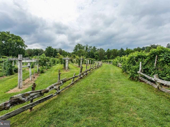 Page County Virginia Historic Homes For Sale 21